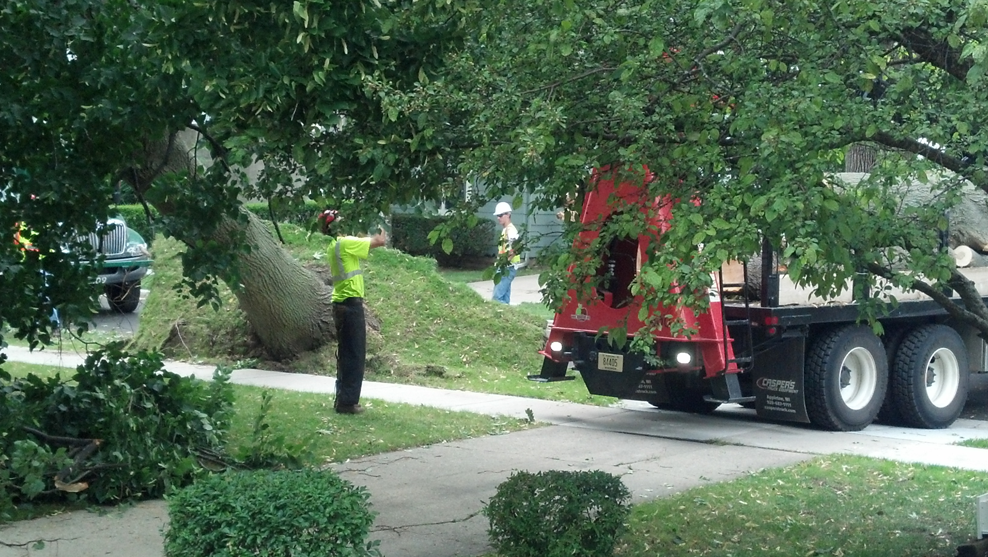 Tree crew adds its own drama.