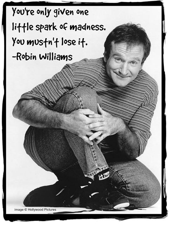 Robin Williams madness