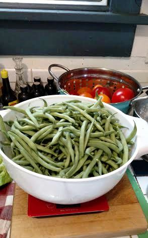 Beans! All from my backyard kitchen garden!