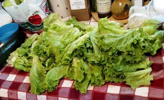 Here's the lettuce.