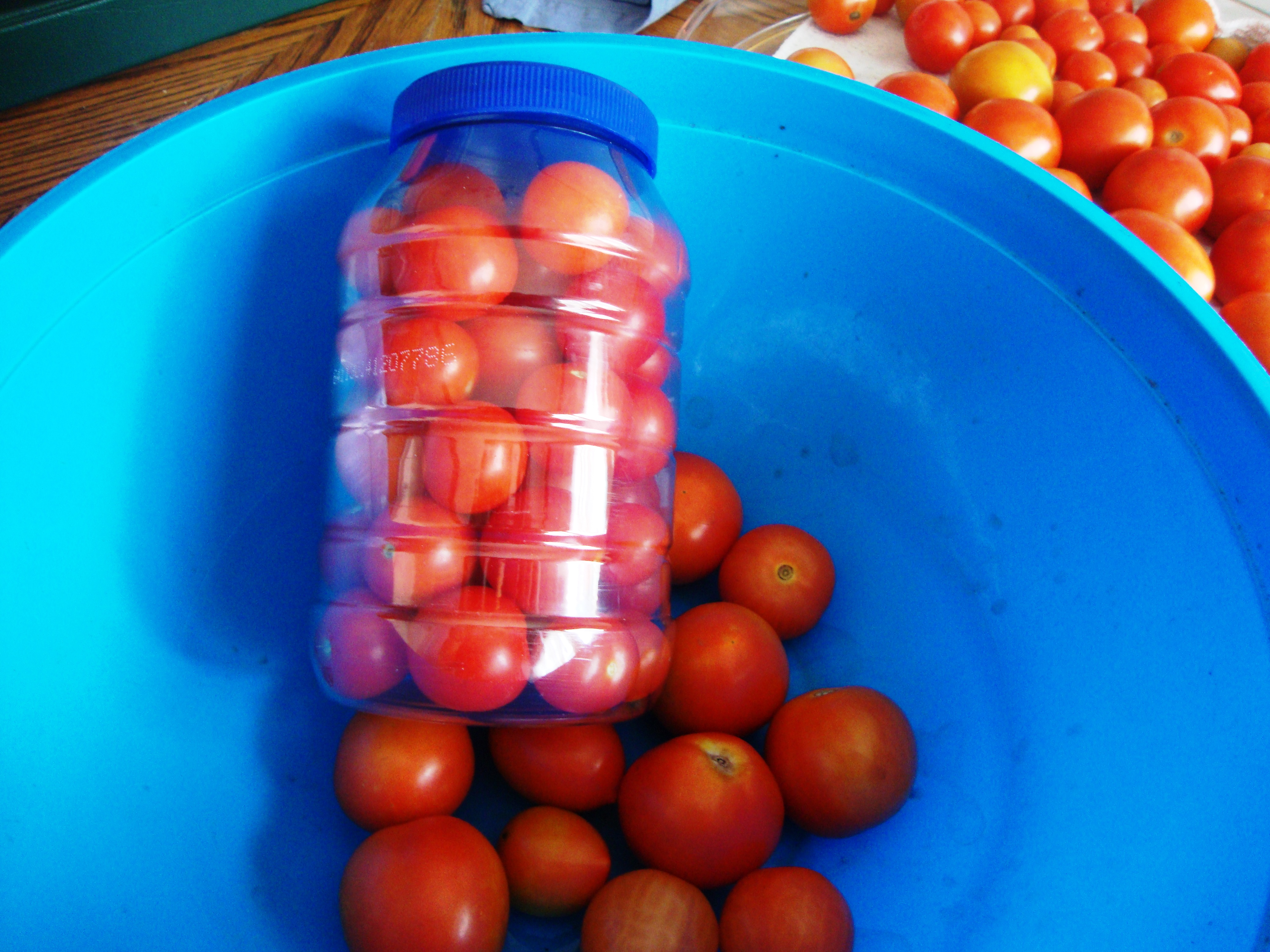 tomatoes for freezer
